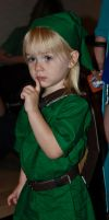 The Lil'est Link by Andashd