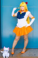 Sailor Venus by mila-tiemy