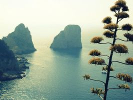 Capri by spiderruth