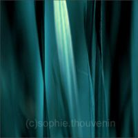 blue grass by prismes