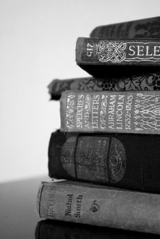 Stacked Up by Emz-Photography