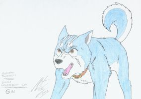 Silver Fang - Gin. 3 by MortenEng21