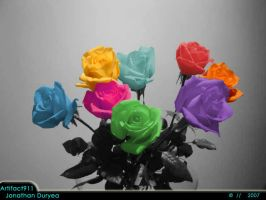An Array of Roses by Artifact911