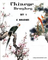 Chinese Brushes 1 - Image Pack by Lileya