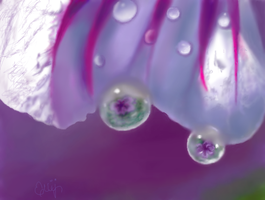 Morning Dew by E by Ellee22