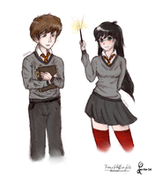 Harry and Hermione: Gender Swap by ThroughMyThoughts