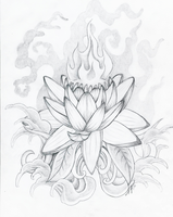 Lotus by Skelos