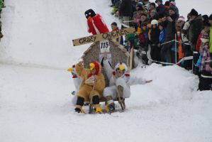 Horn Sledge Race 2013 08 - Chicken by Icedragon300