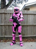 Pink Master Chief by Sunglass