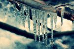 Icicles. by olibomb