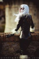 black cat by highdetalio