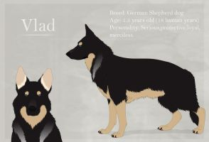 - GSD Vlad reference 2011- by DevaPein