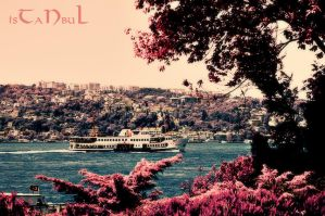 Fly to Istanbul by sinademiral