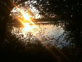 Daventry Country Park 7 by Fan-Gogh