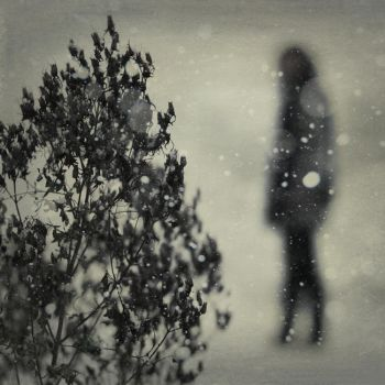 memories from a distant winter by photoflake