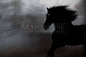 Horse - 10 by mayonaise1980
