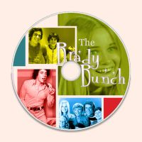 The Brady bunch dvd design by alibabes777