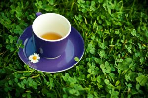 Tea with a camomile3 by CuCat