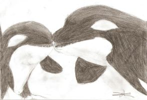 Mother Orca and her baby by ArtsMermaid