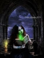 Enchanted Reading by SuzieKatz