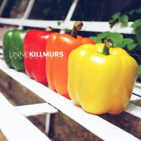 Colored Chilies by linna2m