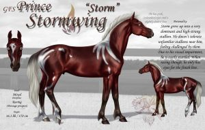 GFS Prince Stormwing by FlareAndIcicle