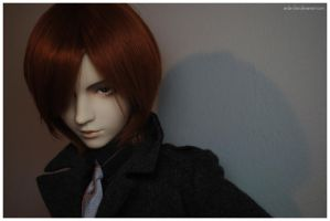 BJDs - Untouchable by anda-chan