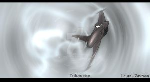 Typhoon wings by zavraan