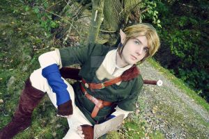 Link Cosplay #8 by Laovaan