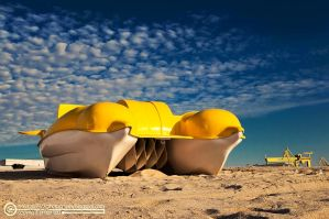 HAPPY YELLOW DOLPHINS by horatziu1977