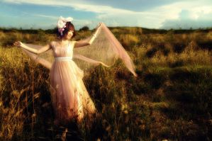 Dancing on the field by vellasky