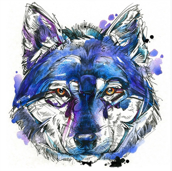 Indigo Wolf by FinchFight
