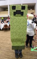 AD 2012 - Minecraft Creeper by The-Emerald-Otter