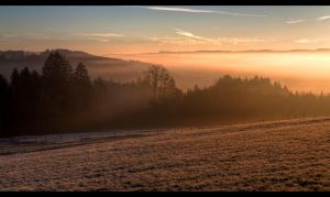 Foggy morning sun by sylaan