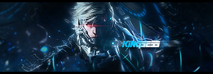 Metal Gear Rising: Revengeance Signature by kingsess
