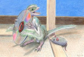 My Pet Microraptor by Rebmakash