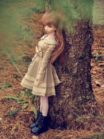 Autumn Winter by narare
