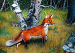 The fox watchful by Arkel666