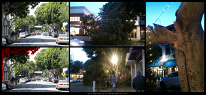 If a Tree Falls in Downtown SLO... by xKIBAx