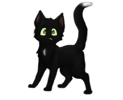 Ravenpaw... by Speckledpath