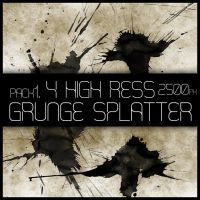 HR Grunge Splat Brush Pack 1 by Viuff