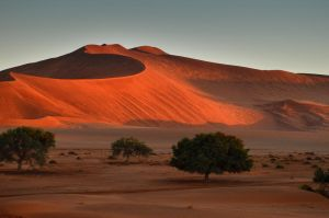 Namib Dunes by suffer1