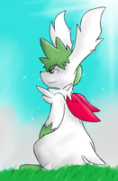 Shaymin: Free as the Wind by DewwyDarts