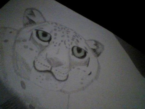 Snow Leopard by SquirrelJoeArmstrong