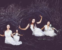 Once Upon a Time - Ginnifer Goodwin Wallpaper by sundaymorning666