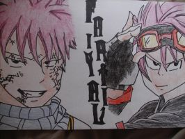 Request- Fairy Tail by FMAFREAK8