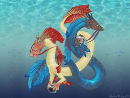 Betta Dragons by RacieB