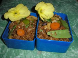 Bento - 5.8.2001 - Fried rice by Flicksi