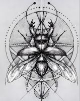 stag beetle thingy by emilyrose727