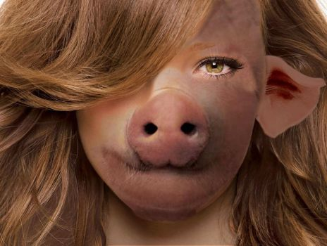 Oink Oink by Computer-Faced